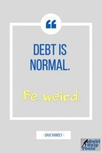 debt is normal
